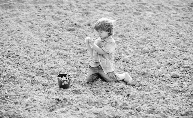 Little boy planting flower in field. Fun time at farm. Happy childhood concept. Little helper in garden. Child having. Fun with little shovel and plant in pot royalty free stock photography