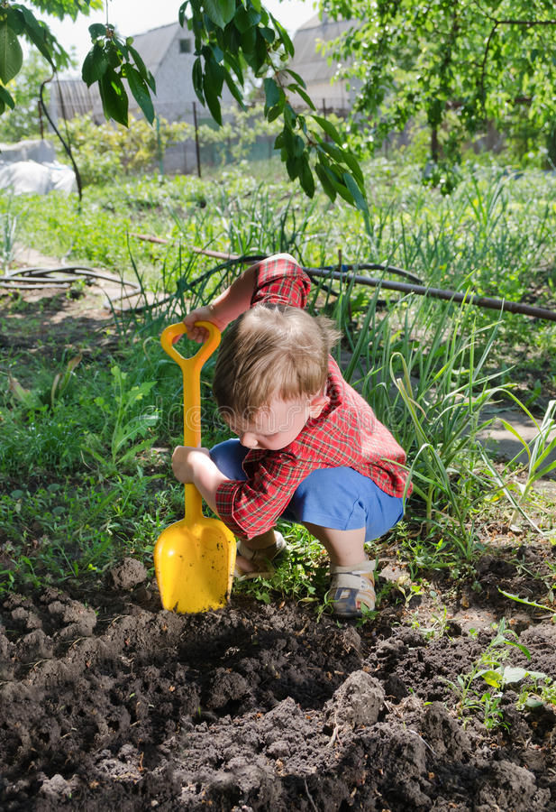 Little boy planting vegetables stock image image of for Digging ground dream meaning