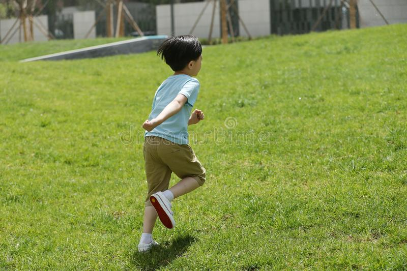 The little boy played. On the grass stock images