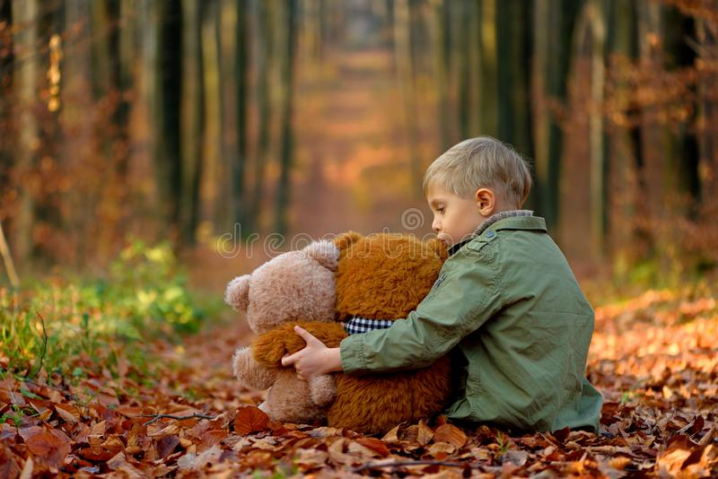 A little  boy playing in the autumn park. royalty free stock photography