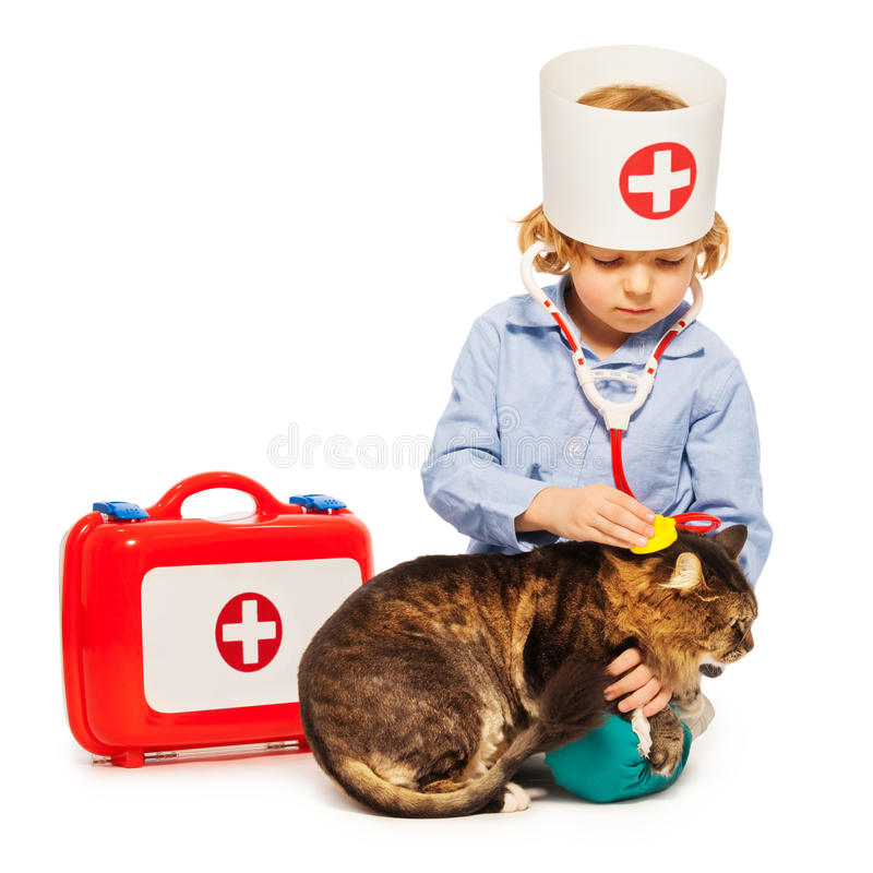 Little boy playing doctor veterinarian with a cat. Isolated on white background royalty free stock photo