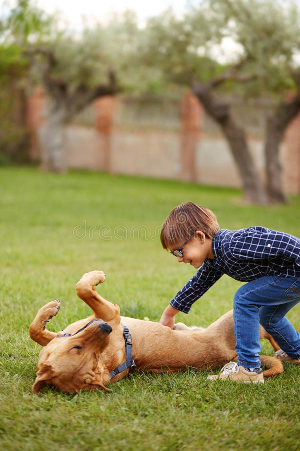 Little boy playing with a dog stock photography