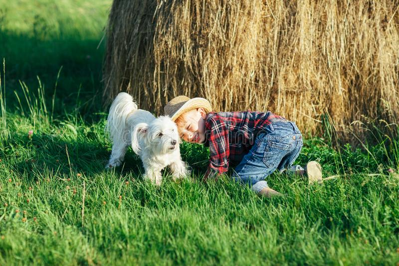 Little boy playing with dog near haystack in nature royalty free stock image