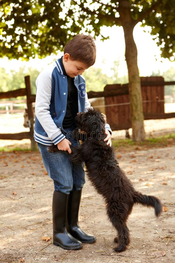 Little boy playing with dog. Outdoors stock photography