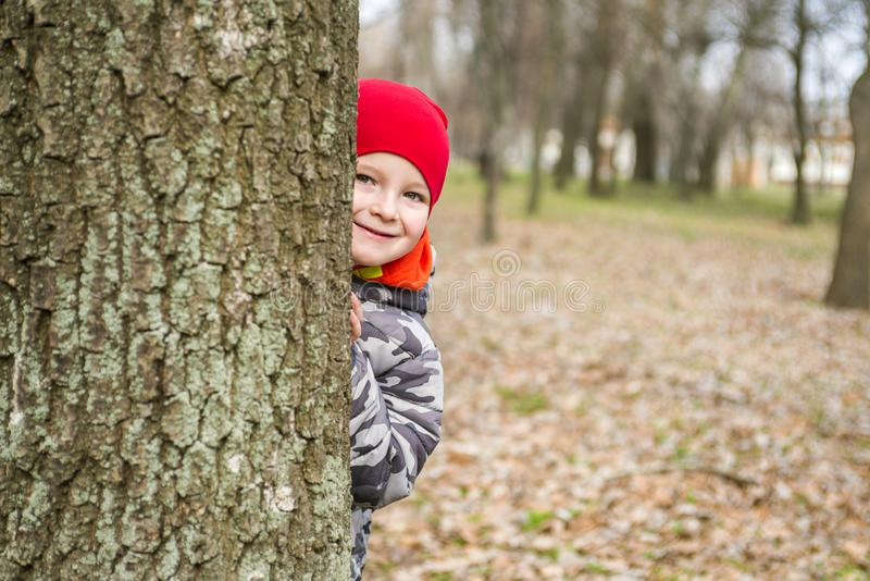 Little boy is playing hide and seek outdoors. Little boy hiding behind a tree trunk in a park stock photos