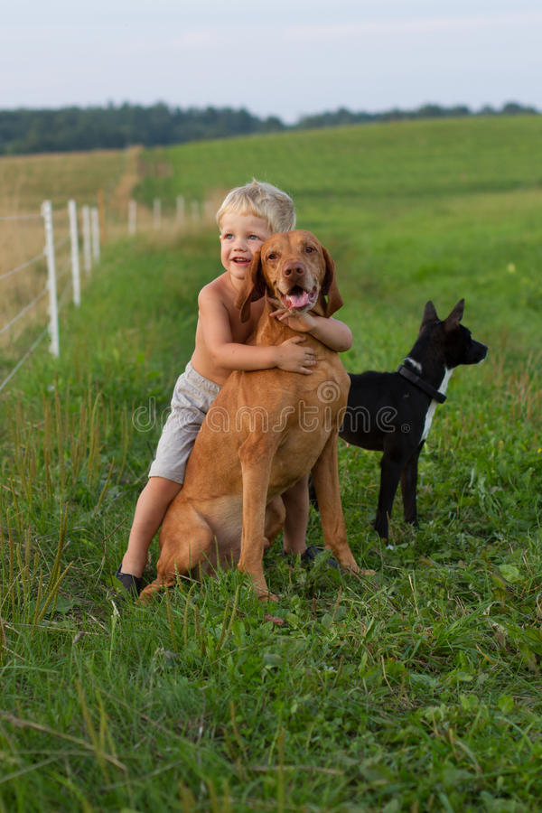 Little boy playing with his dog stock image
