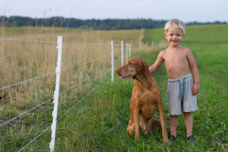 Little boy playing with his dog royalty free stock photography