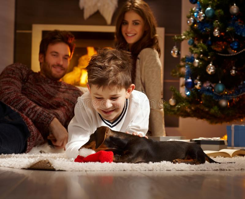 Little boy playing with puppy. Little boy caressing and playing with dachshund puppy received for christmas stock images