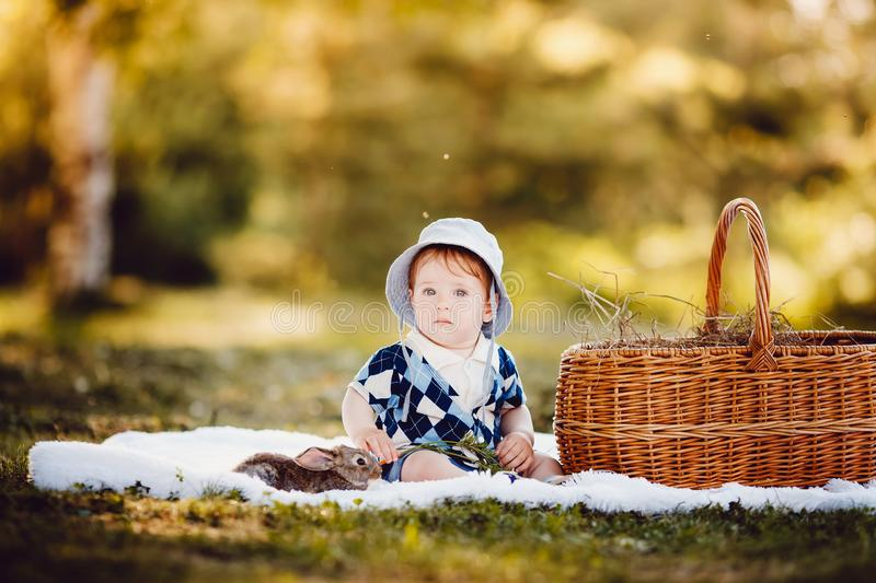Little boy playing with rabbits in the park. Summer and autumn landscape. Concept children and nature, contact zoo royalty free stock images