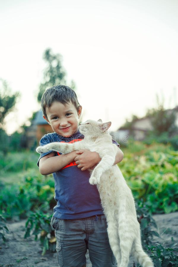 Little boy are playing with red fur cat in village. Outdoor summer stock photo