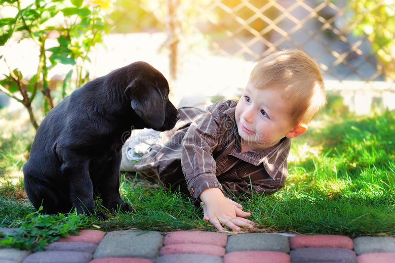 Little boy playing in the yard with a puppy Labrador stock image