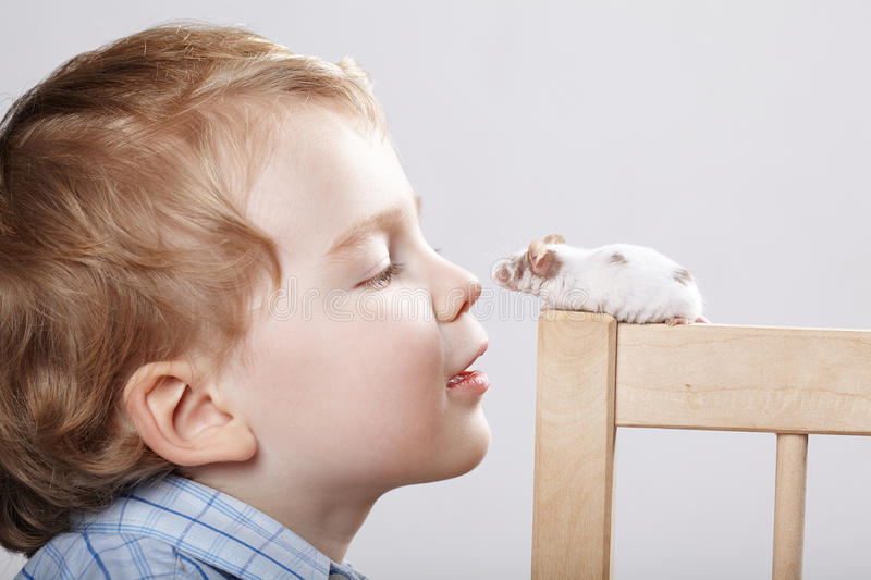Little boy plays with mouse stock images
