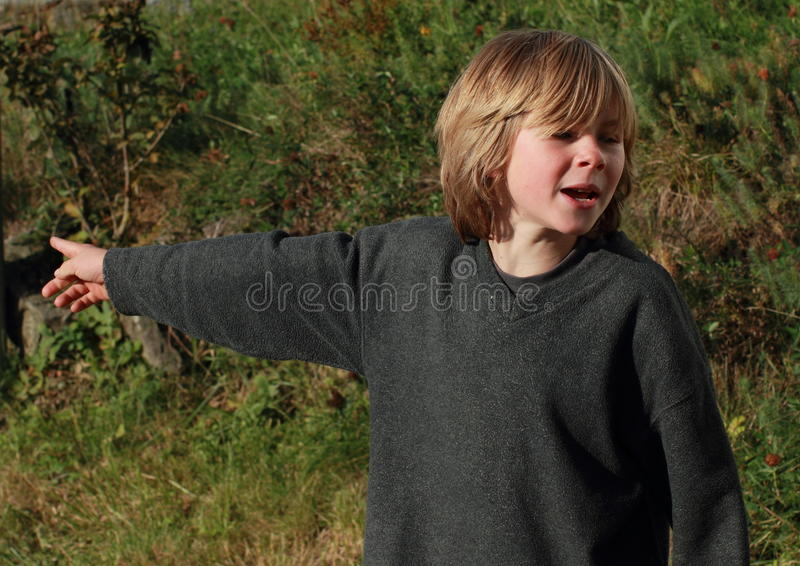 Download Little boy pointing stock image. Image of pull, pullover - 21656135