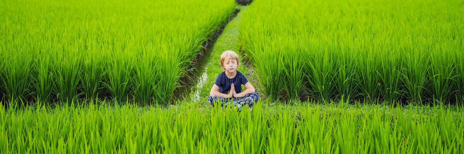 Little boy practices yoga in a rice field, outdoor. Gymnastic exercises BANNER, LONG FORMAT stock photos