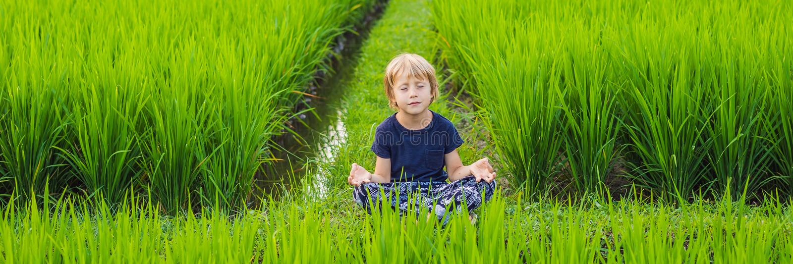 Little boy practices yoga in a rice field, outdoor. Gymnastic exercises BANNER, LONG FORMAT royalty free stock photography