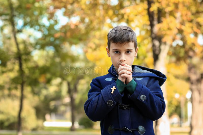 Little boy praying in park stock images
