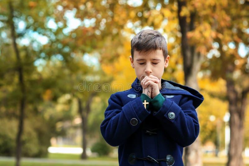 Little boy praying in park royalty free stock photo