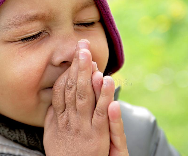 Little boy praying to God with hands held together stock photo stock images