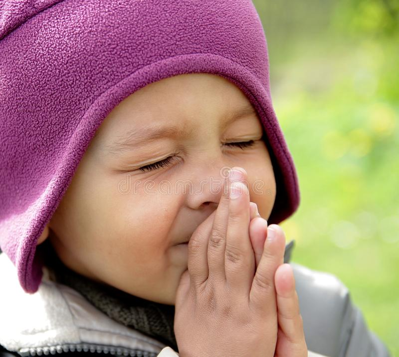 Little boy praying to God with hands held together stock photo stock photography