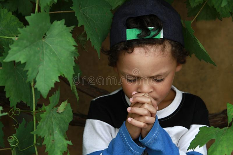 Little boy praying to God with hands held together stock photo royalty free stock images