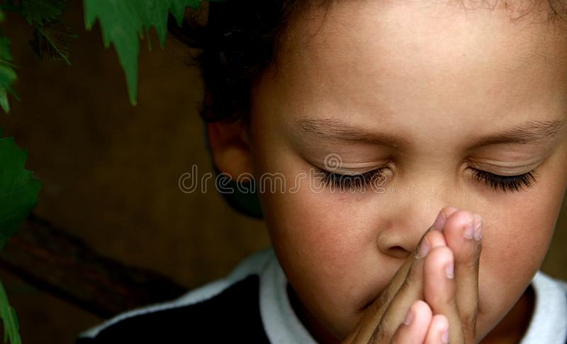 Little boy praying to God with hands held together stock photo royalty free stock image