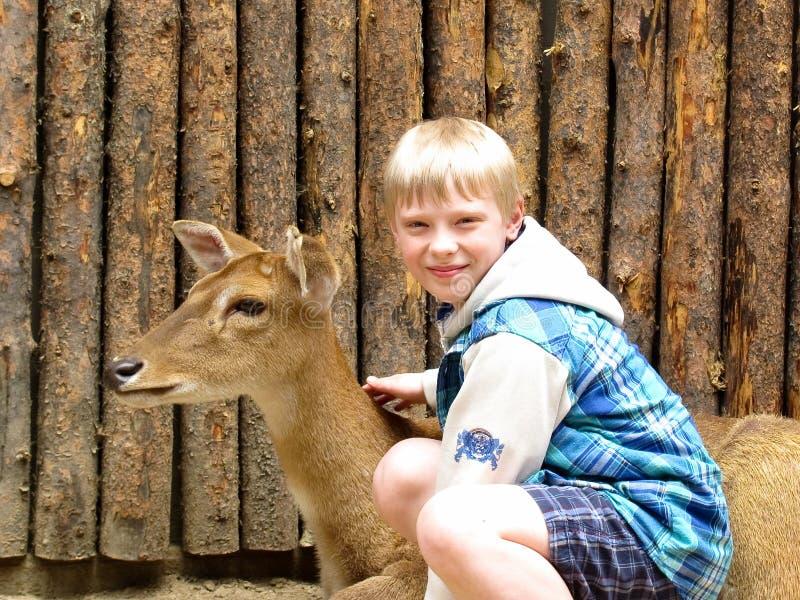 Little Boy que acaricia un ciervo imágenes de archivo libres de regalías