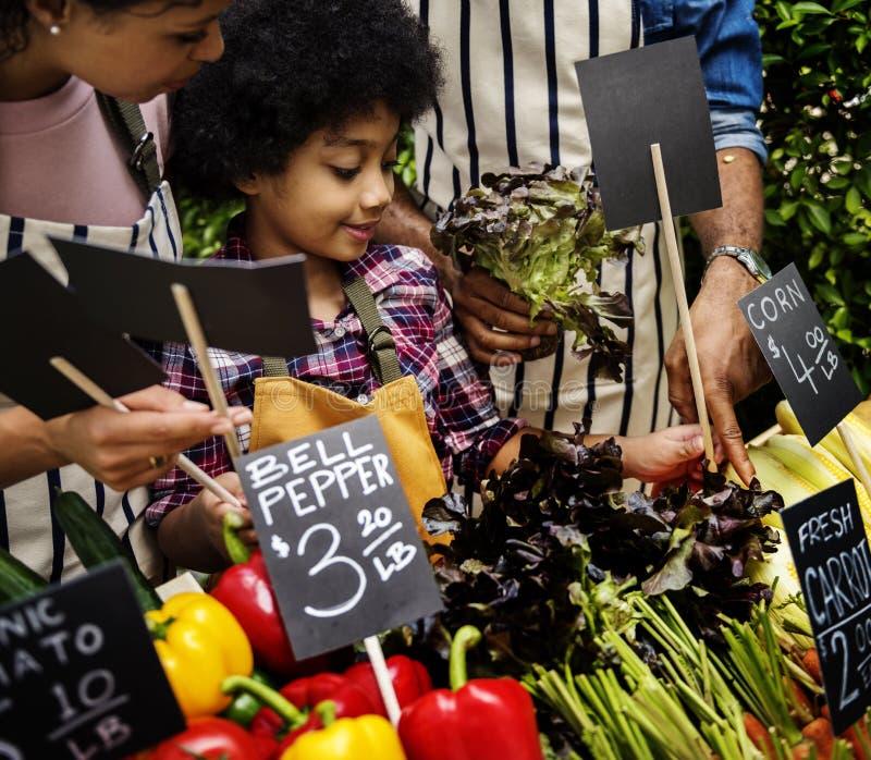 Little Boy que vende o vegetal no conceito do mercado imagem de stock royalty free