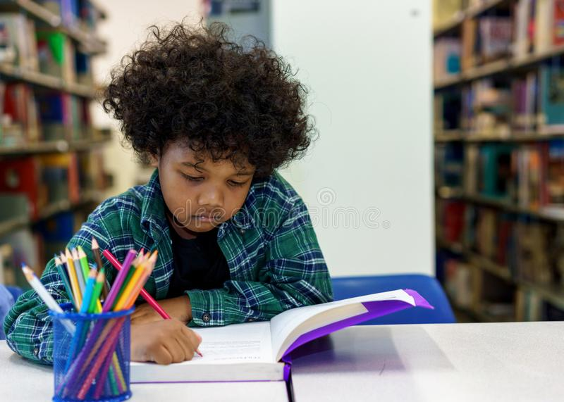 Little boy reading book in the library royalty free stock photo