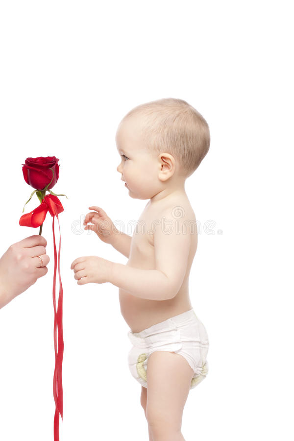 Little boy with red rose stock photo