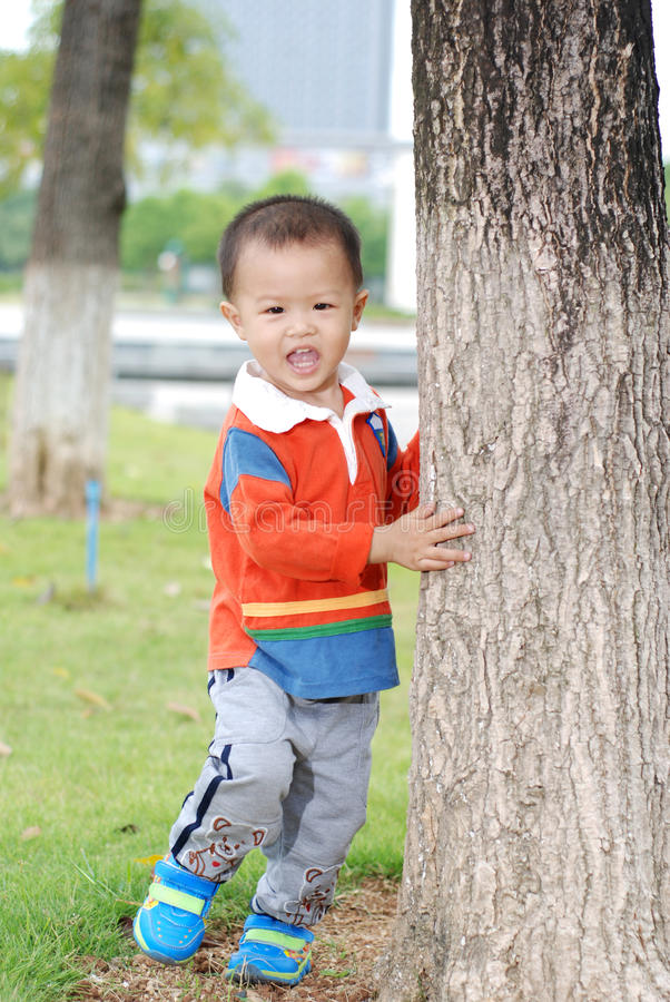 Little boy rely the tree stock images