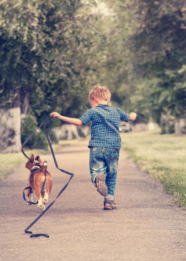 Little boy running with his beagle puppy stock photography