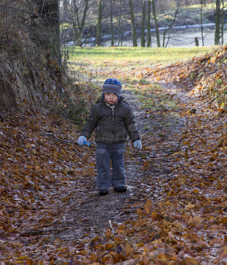 Little boy with a sad face, possibly lost walks a forest path royalty free stock photos