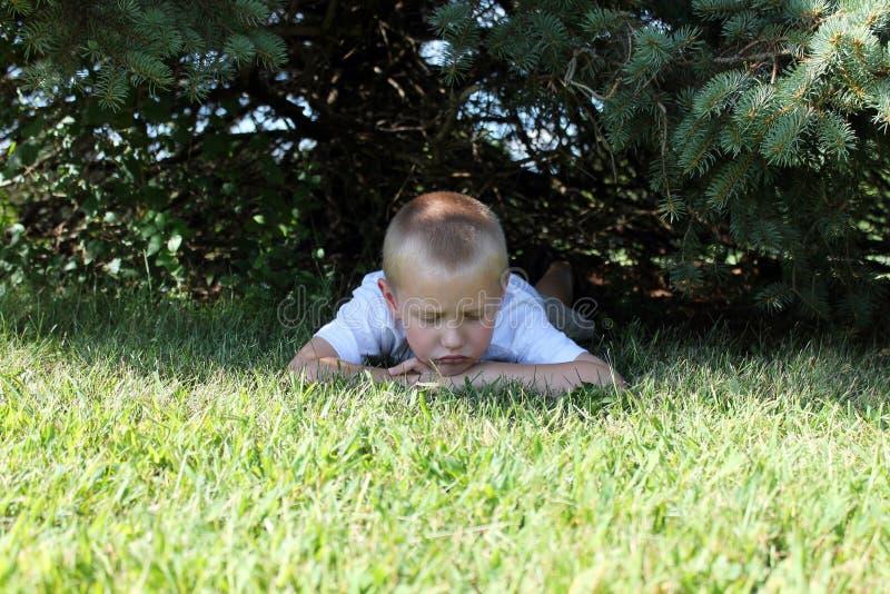 Little Boy Sad Stock Photo