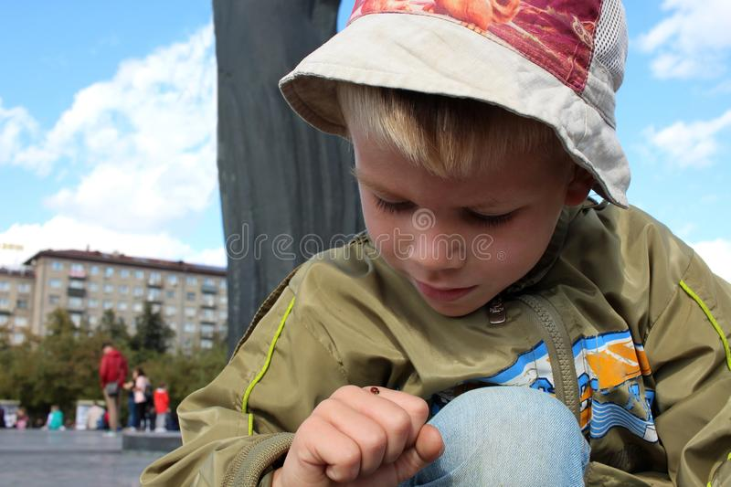 The little boy sees a ladybug insect on hand. Little boy found treats ladybug insect on hand among the city stock photos