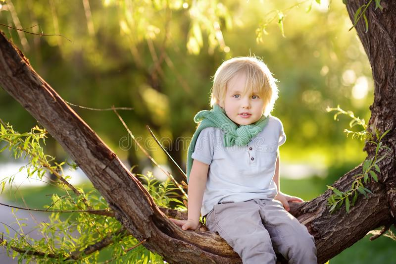 Little boy is sitting on a branch of big tree and is dreaming. Child`s games. Active family time on nature. Hiking with kids royalty free stock photos