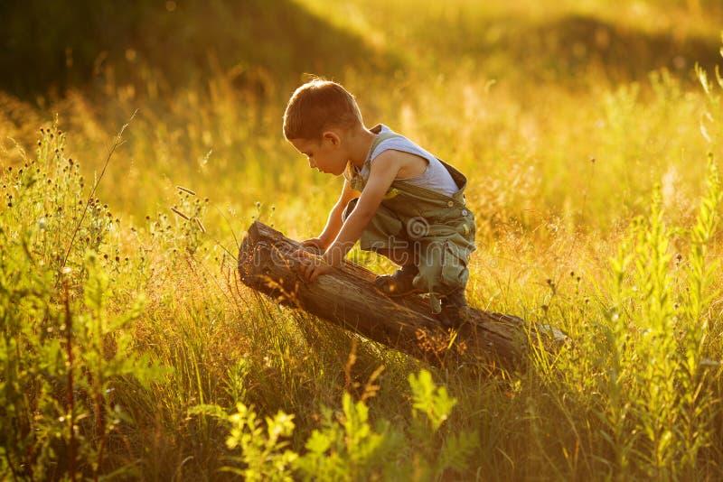 Little boy sitting on a snag stock photos