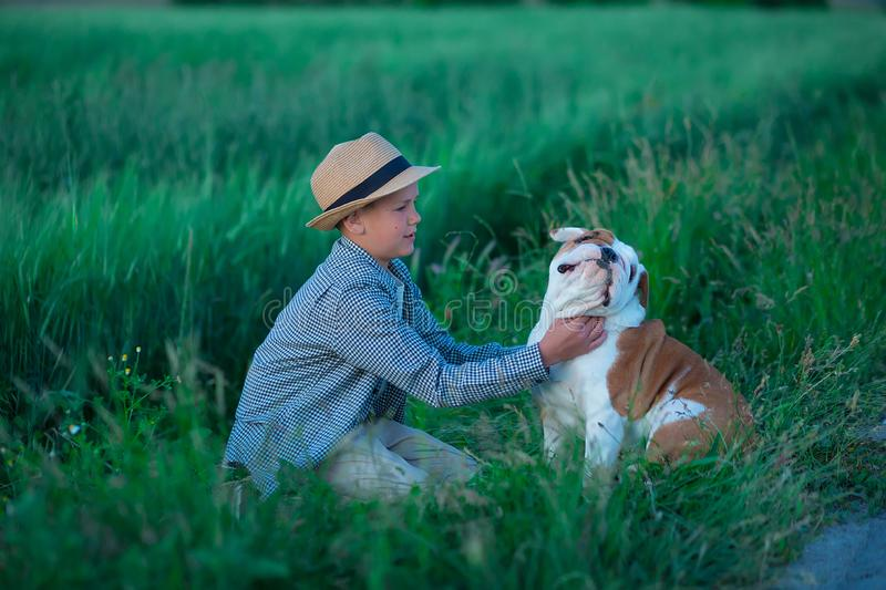 Little boy sitting standing with his english bull dog on the meadow of green rye. Handsom kid posing with best friend wearing. Stylish clothes and rustic retro stock photography
