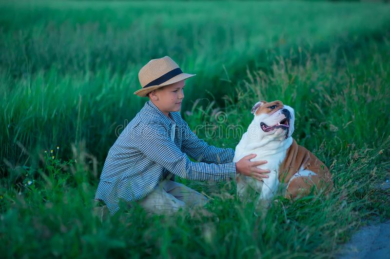 Little boy sitting standing with his english bull dog on the meadow of green rye. Handsom kid posing with best friend wearing. Stylish clothes and rustic retro royalty free stock photo