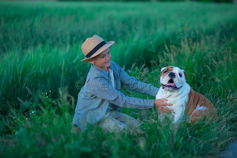 Little boy sitting standing with his english bull dog on the meadow of green rye. Handsom kid posing with best friend wearing. Stylish clothes and rustic retro stock photo
