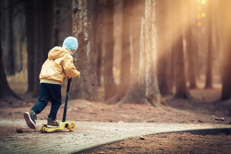 Little boy skates on scooter in evening park at sunset under light of lanterns. kid is riding scooter along path in dark forest. royalty free stock images