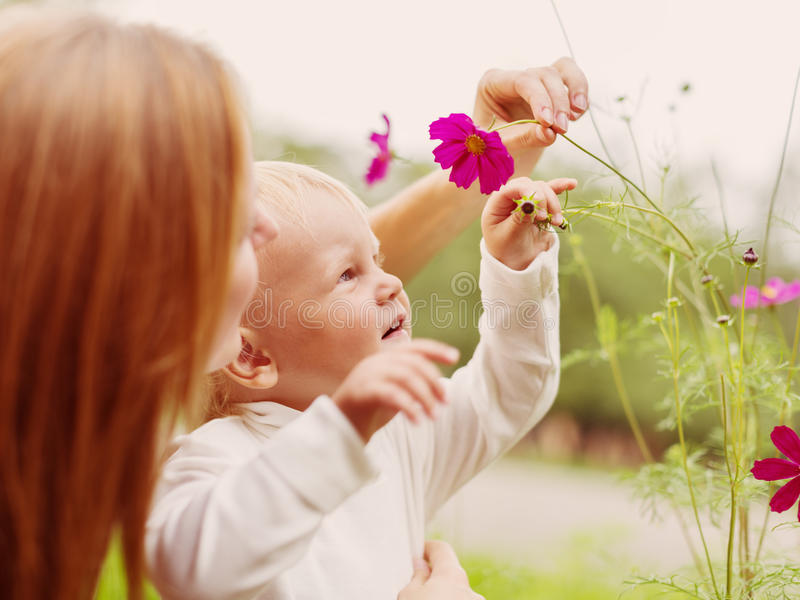 Download Little Boy Smelling Flower stock photo. Image of baby - 34441562