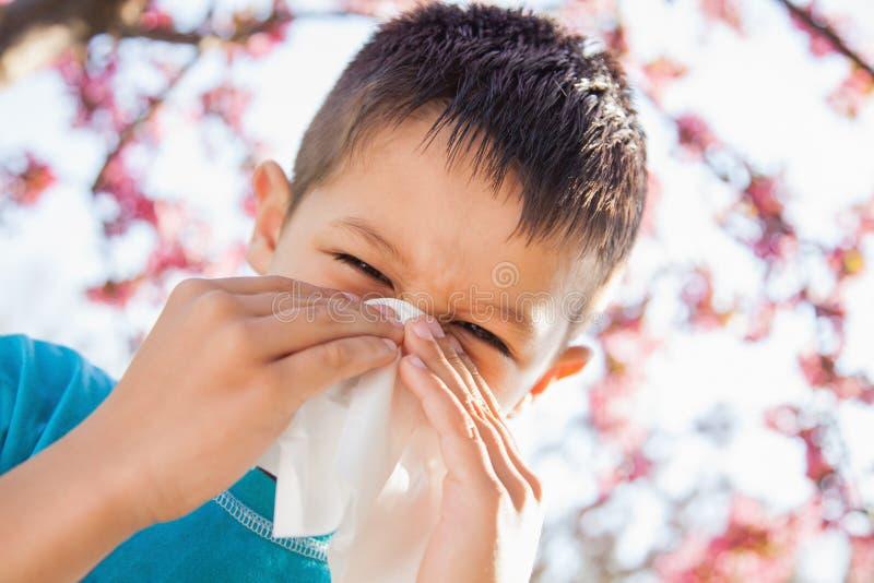 Little boy sneezing stock photo