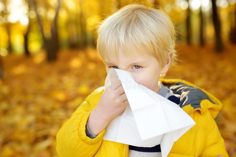 Little boy sneezing and wipes nose with napkin during walking in autumn park. Flu season and cold rhinitis. Allergic kid. Sick kids royalty free stock image