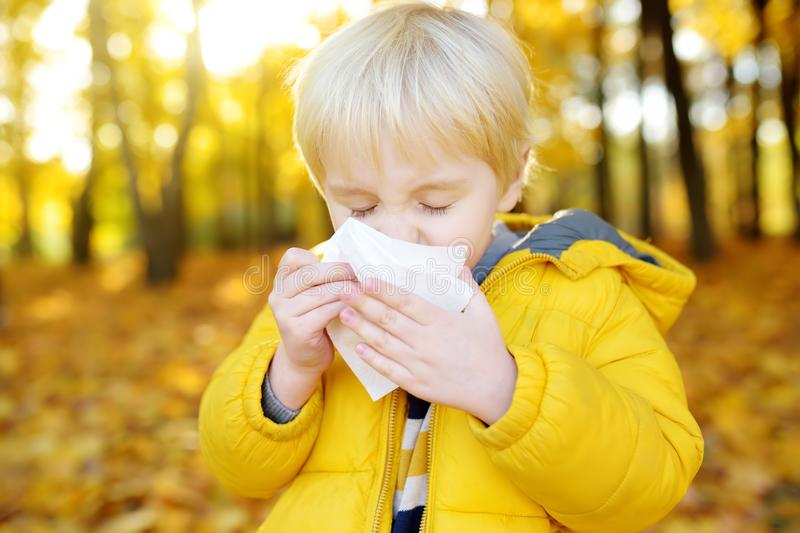 Little boy sneezing and wipes nose with napkin during walking in autumn park. Flu season and cold rhinitis. Allergic kid. Sick kids stock photography