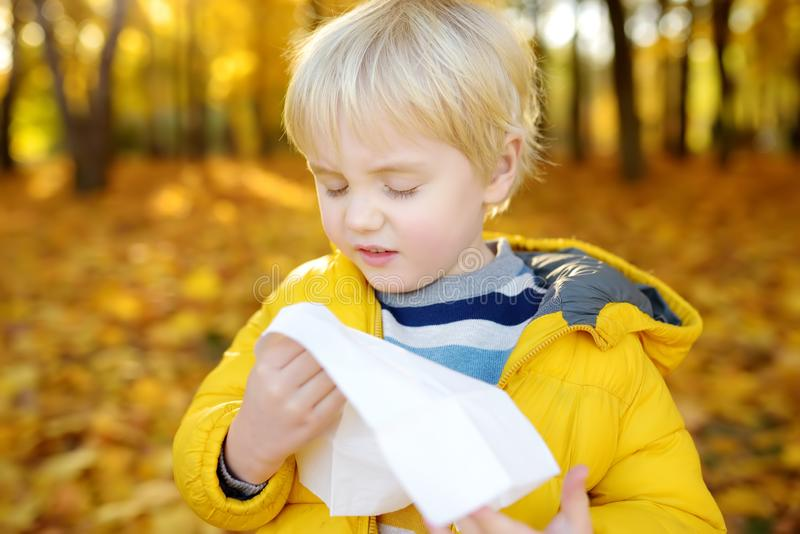 Little boy sneezing and wipes nose with napkin during walking in autumn park. Flu season and cold rhinitis. Allergic kid. Sick kids stock images