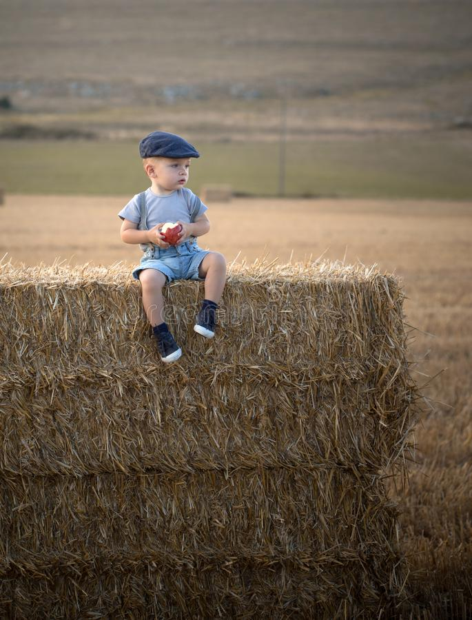 Little boy on a stack of hay stock images