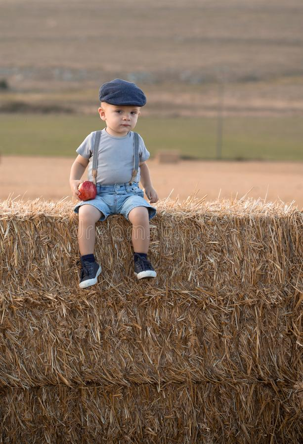 Little boy on a stack of hay royalty free stock image