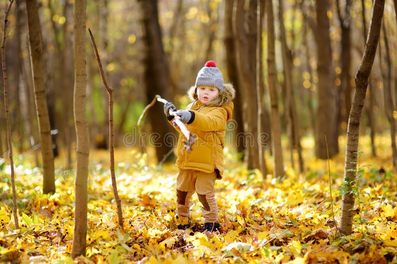 Little boy during stroll in the forest at cold sunny autumn day. Active family time on nature. Hiking with little kids royalty free stock photo