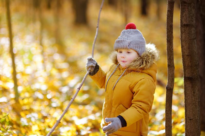 Little boy during stroll in the forest at cold sunny autumn day. Active family time on nature. Hiking with little kids stock photography