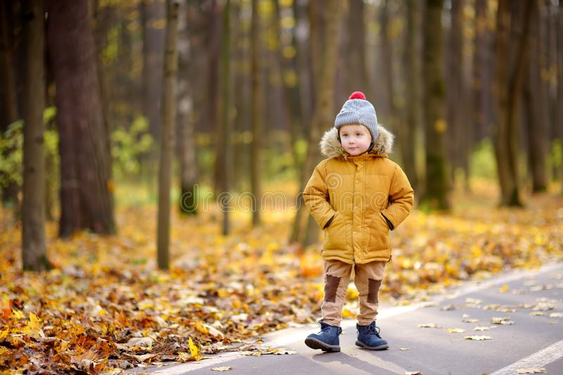 Little boy during stroll in a public park at cold sunny autumn day. Active family time on nature. Hiking with little kids royalty free stock photo
